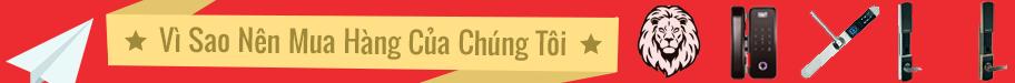 banner lion ngang