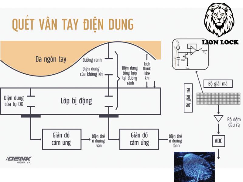 Máy Quét Điện Dung Vân Tay