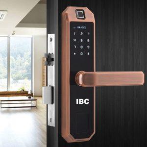 khóa cửa vân tay ibc a2